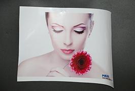 Селф Адхесиве Винил принимает екологические печать екологические принтери ВЕР-ЕС3202 4м